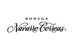 NAVARRO-CORREAS-2021